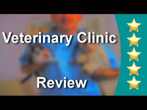 Parktown Veterinary Clinic Milpitas| Five Star Review by Luz.e R.
