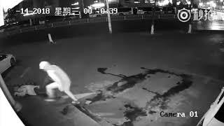 Ladri in azione in Cina, il colpo non va propriamente a segno...