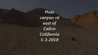 Mule Canyon rd east of Calico California 5-3-2018