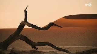 Namibya Belgeseli