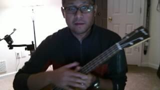 baritone ukulele and tenor guitar comparison
