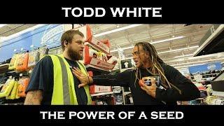 Тодд Уайт - Сила сеяния семени
