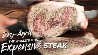 1 Million Special: DŔY AGE Most EXPENSIVE Steak on Earth | Guga Foods