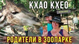 Мама в Зоопарке Кхао Кхео в Паттайе - Кормим животных, Жирафы и Обезьяны, Тайланд