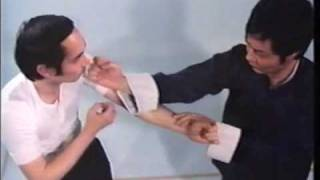 Video Wing Chun Basic Techniques part 1 download MP3, 3GP, MP4, WEBM, AVI, FLV Oktober 2018