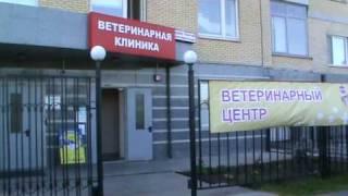 Ветклиника  www.mskvet.ru
