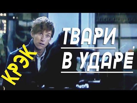 """Твари в ударе (""""Фантастические твари"""", крэк!)"""