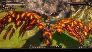 MMO Dive: Dragons Prophet EU