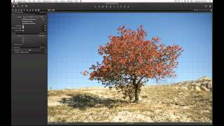 Lens Corrections Tool in Capture One 7 | Phase One