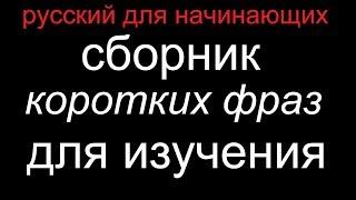 Разговорный русский: фразы для ежедневного общения