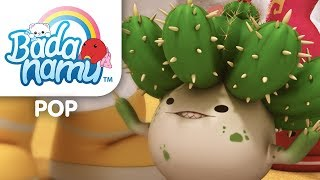 Don't Hug a Cactus
