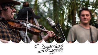 West King String Band - Red Haired Boy ft. Spooky Fiddler (Live Acoustic) | Sugarshack Sessions