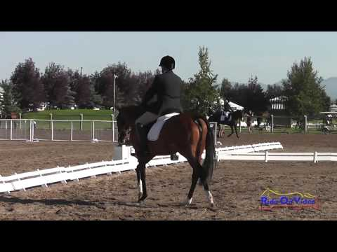296D Jeff Goodwin on Snip Of The Mist SR Training Dressage The Event at Rebecca Farm July 2015