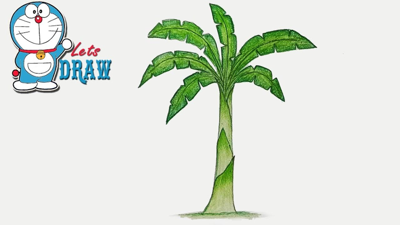 How to draw banana tree step by step very easy