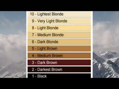 Understanding International Color Chart(Asma bilal)