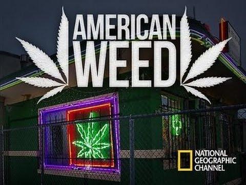 Download American Weed - Episode 6 [FR]