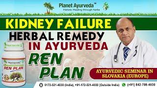 Kidney Failure Herbal Remedy in Ayurveda - REN PLAN