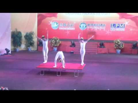 China acrobatic show