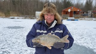 Зимняя рыбалка на форелевых прудах Лепсари СПБ Всеволожский район