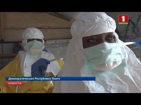Вспышка вируса Эболы достигла международного масштаба