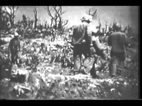 Marine activity (Iwo Jima)