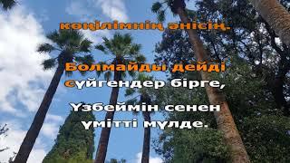 Маржан Арапбаева - Арманыма асығамын (қазақша караоке, минус)