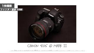 Canon EOS 6D Mark II | Shutter…