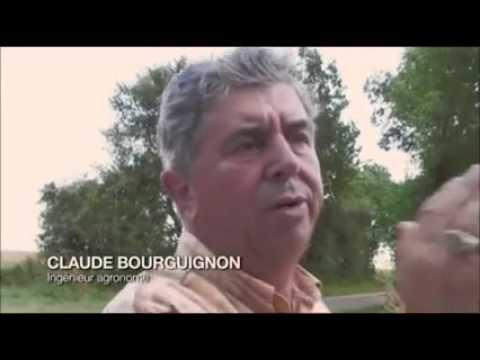 Claude Bourguignon - La microbiologie des sols