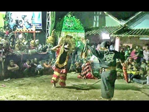 Singo Kumbang & Banteng Suro Galak Gelut dng  Penonton---Rogo Wijoyo Live Mojokendil Ngronggot