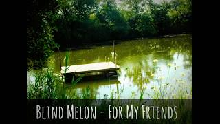 Watch Blind Melon For My Friends video