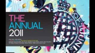 Ministry of Sound - The Annual 2011 2