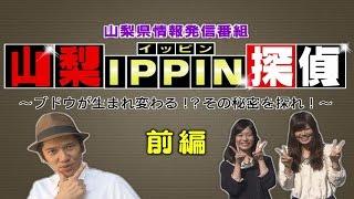 今回の『山梨県情報発信番組』は、「山梨IPPIN探偵~ブドウが生まれ変わ...