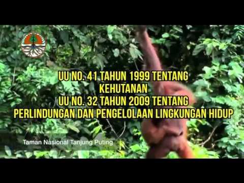Kementerian Lingkungan Hidup dan Kehutanan Mp3