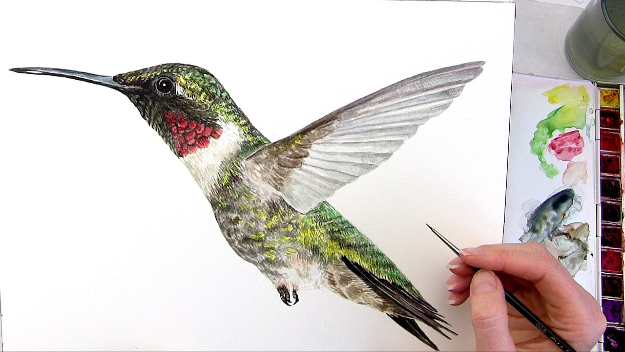 How To Paint Feathers On A Bird With Acrylic
