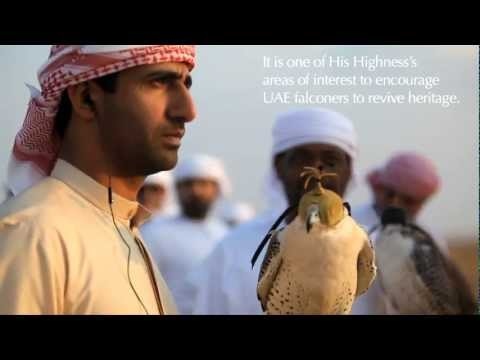 Abu Dhabi falconers and their racing birds