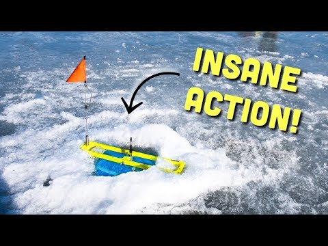 MAJOR Tip Up Action!! Ice Fishing 2019 (Crystal Clear Water) Lake Orion MI