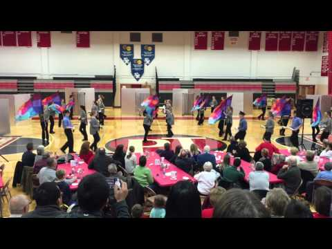 Peters Township Winterguard Performance 2016