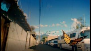 Promo dello Spot TV 20#39#39 - Aruba e National Geographic, insieme per un IT sostenibile