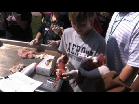 LANDS - Learning Across New Dimensions in Science - Texas Wildlife Association