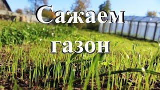 Сажаем газон. От сорняков до всходов.(, 2016-09-29T03:59:08.000Z)