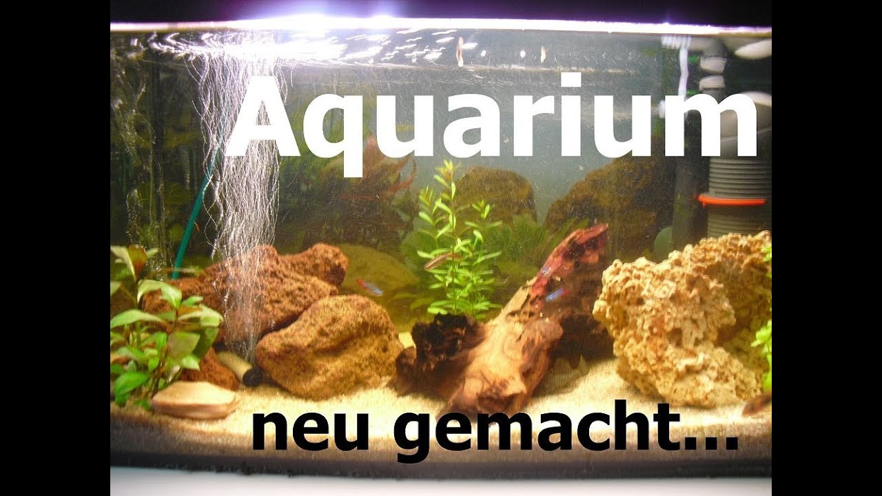 my fish kleines aquarium tutorial 50 liter aquarium. Black Bedroom Furniture Sets. Home Design Ideas
