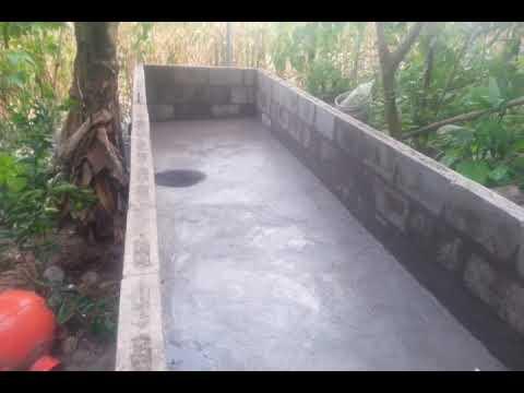 Elaboraci n de estanque para tilapias parte 3 youtube for Fabricacion de estanques