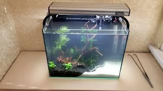 Вторая жизнь маленького аквариума
