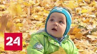 Смотреть видео Наслаждаться золотой осенью в Москве можно будет еще неделю - Россия 24 онлайн