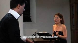 Pierrot Lunaire Pieter vd Wulp 15 Heimweh