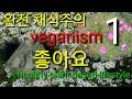 veganism 완전채식주의 diet 다이어트 탄수화물 포도당 체중감량 weight loss