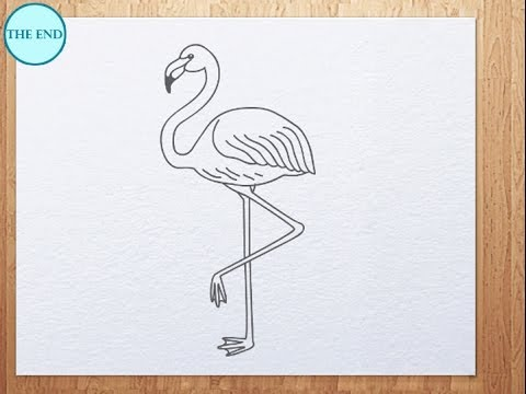 How To Draw Flamingo Youtube