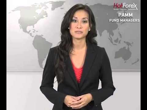 hotforex-pamm-fund-managers