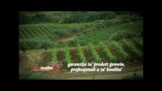 Vitimalta: Maltese Viticulture Farmers Producer Organisation For Grapes And Wines