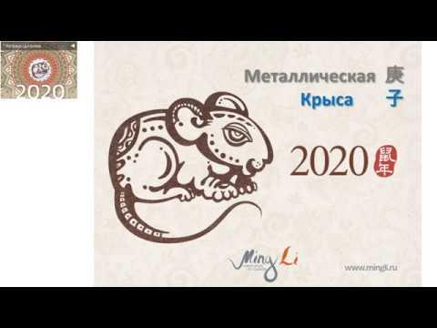 Готовимся к году Металлической Крысы 2020